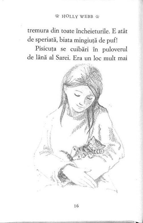Holly Webb - Pufi, pisicuta ratacita in zapada -