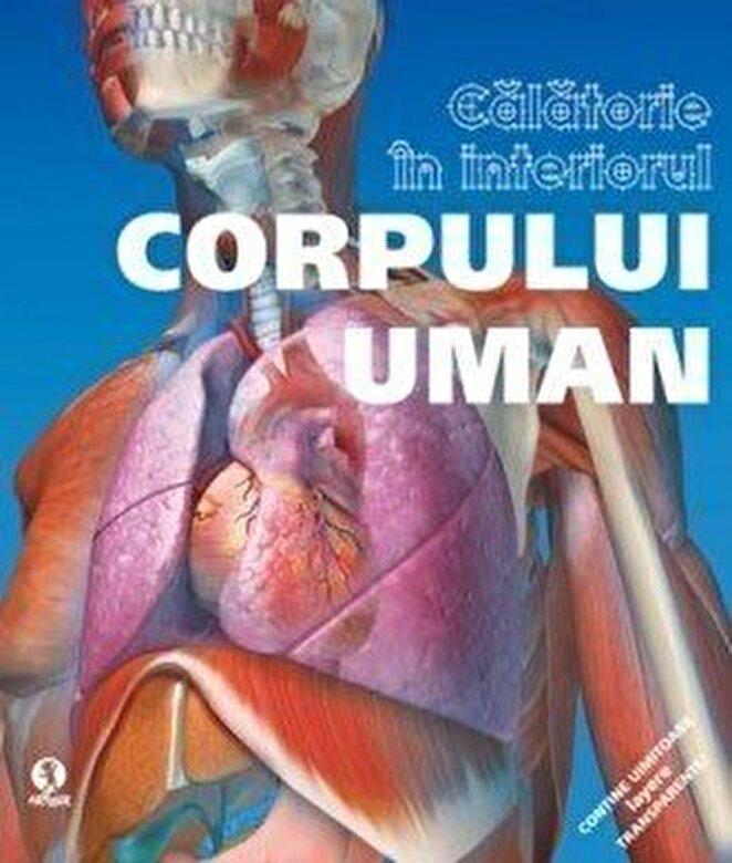 *** - Calatorie in interiorul corpului uman -