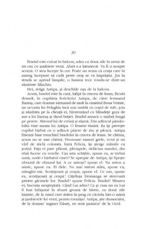 George Balaita - Opere I. Lumea in doua zile -