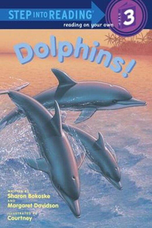 Sharon Bokoske - Dolphins!, Paperback -