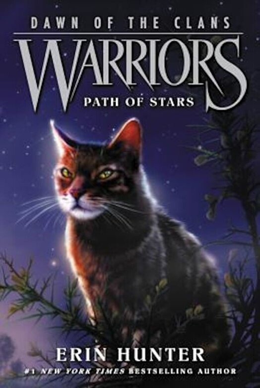 Erin Hunter - Warriors: Dawn of the Clans #6: Path of Stars, Paperback -