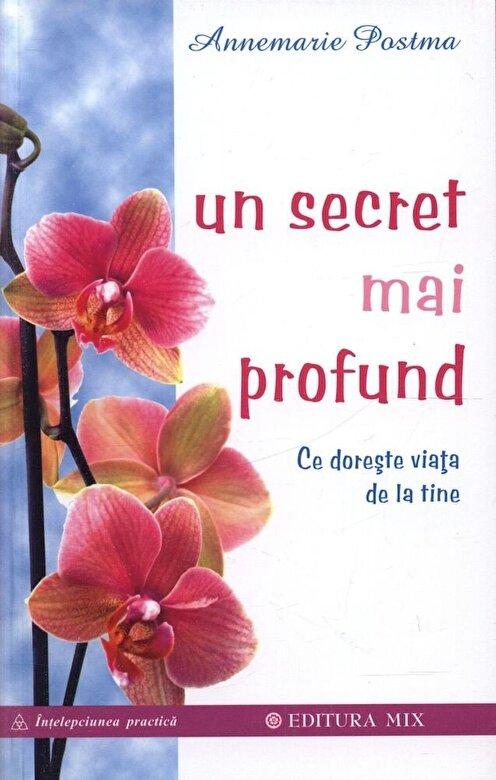 Annemarie Postma - Un secret mai profund. Ce doreste viata de la tine -