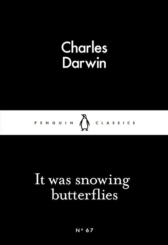 *** - It Was Snowing Butterflies -