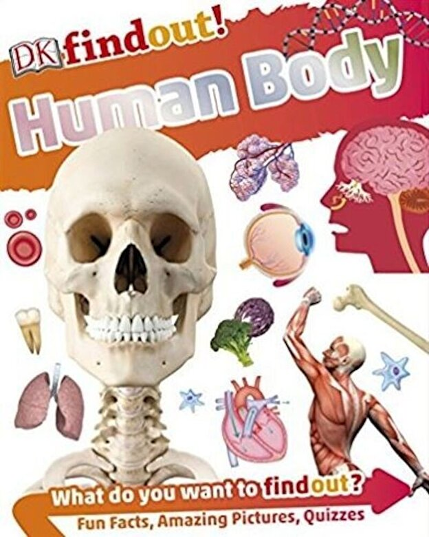 DK - Human Body -