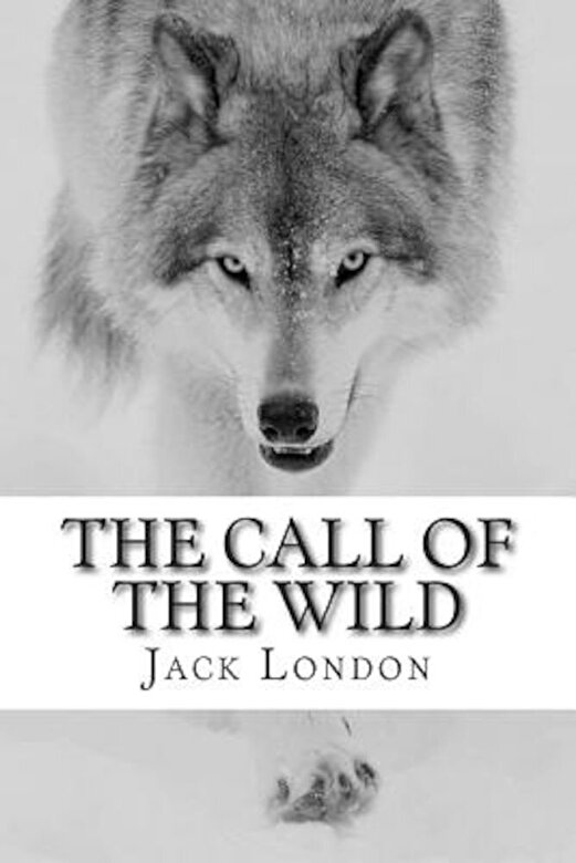 Jack London - The Call of the Wild, Paperback -