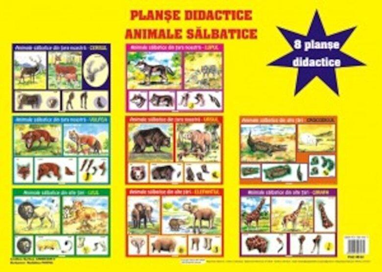 *** - Planse didactice - Animale salbatice -