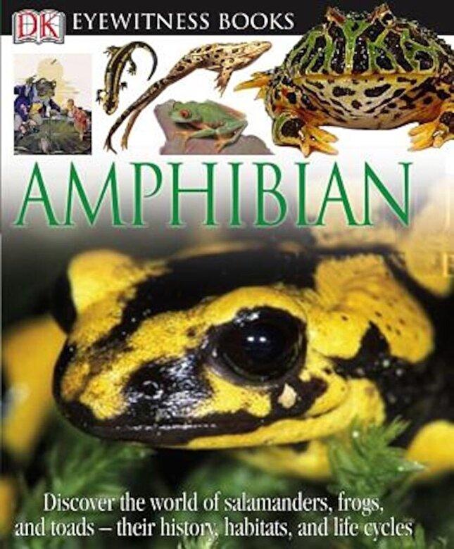 Barry Clarke - DK Eyewitness Books: Amphibian, Hardcover -