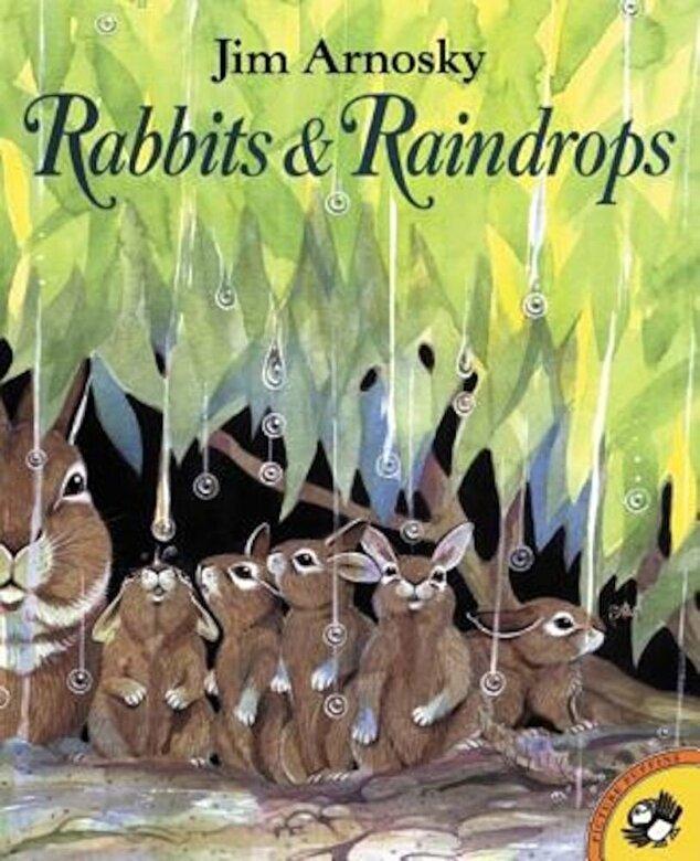 Jim Arnosky - Rabbits and Raindrops, Paperback -