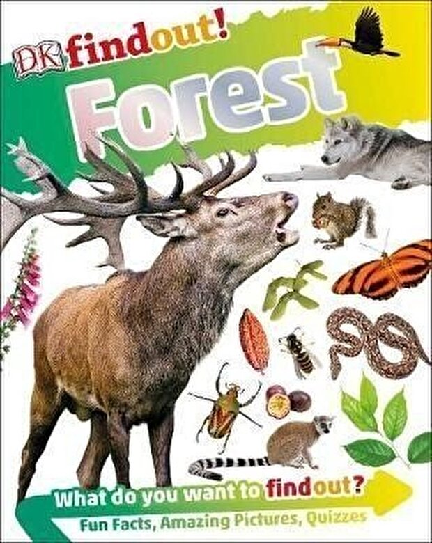 DK - Forest -