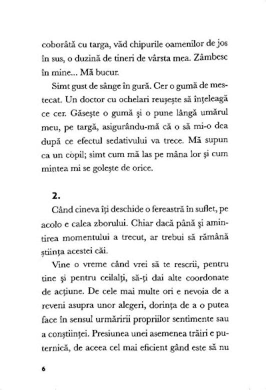 Monica Radu - Dantele interioare -