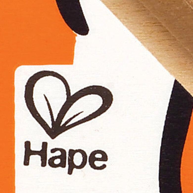 Hape - Labirint Pestisor -