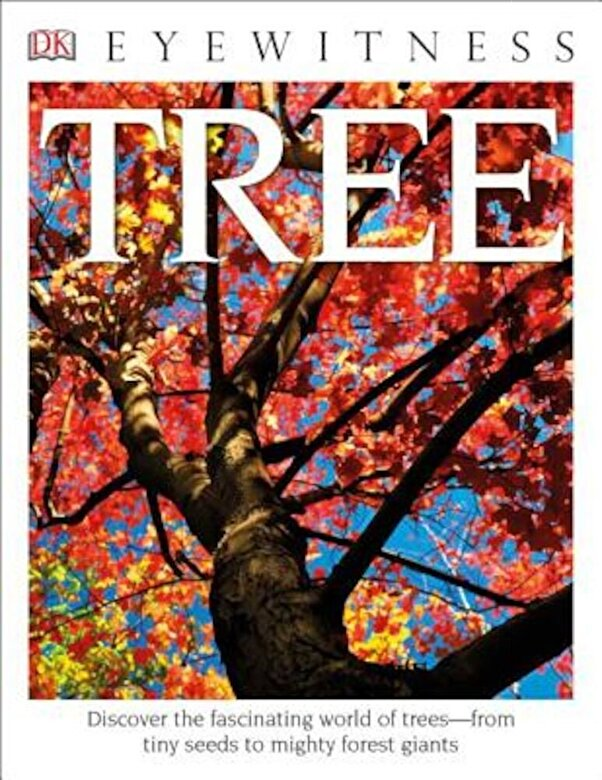 David Burnie - Tree, Paperback -