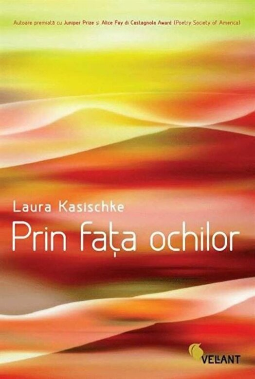Laura Kasischke - Prin fata ochilor -