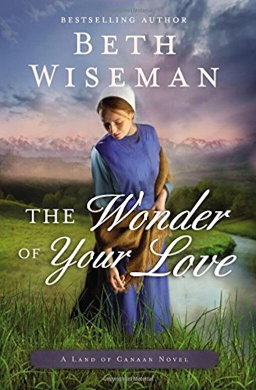 Beth Wiseman - The Wonder of Your Love, Paperback -