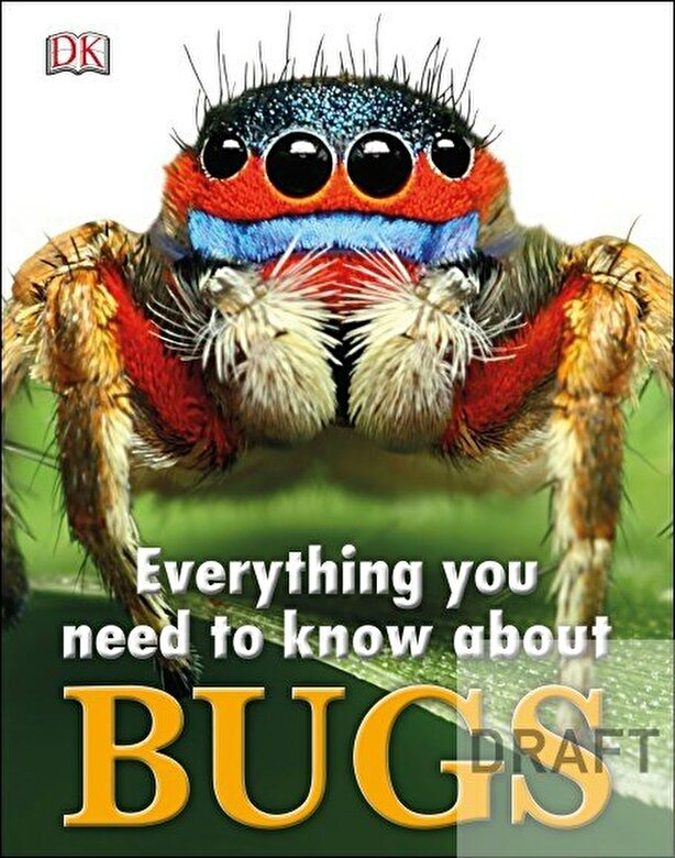 - Everything You Need to Know About Bugs -