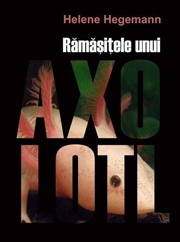 Helene Hegemann - Ramasitele unui Axolotl -