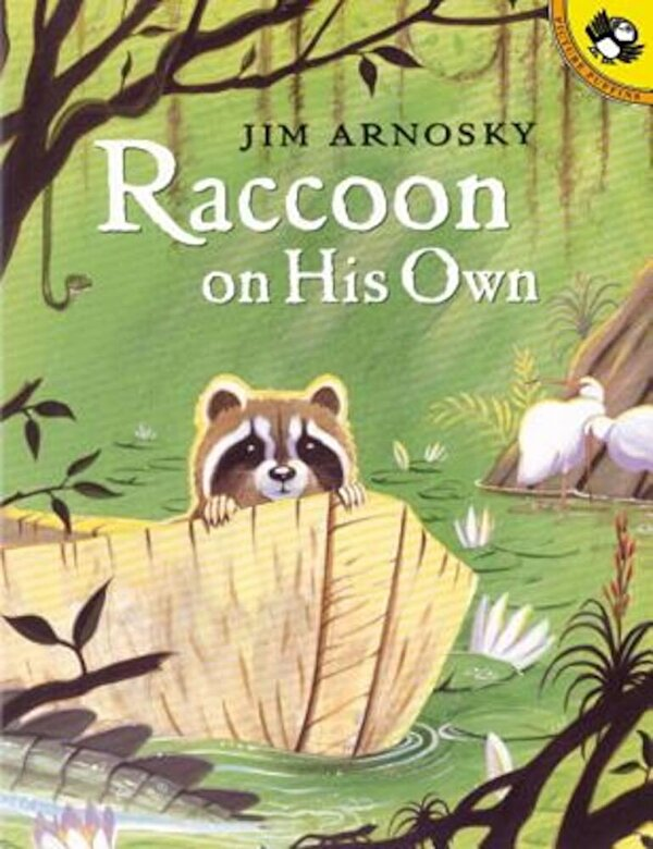 Jim Arnosky - Raccoon on His Own, Paperback -