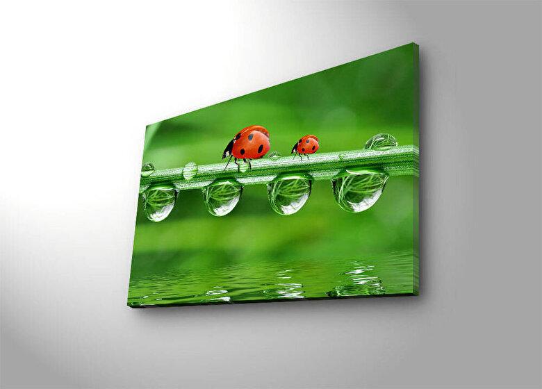 Shining - Tablou pe panza iluminat Shining, 239SHN1295, 45 x 70 cm, panza - Verde