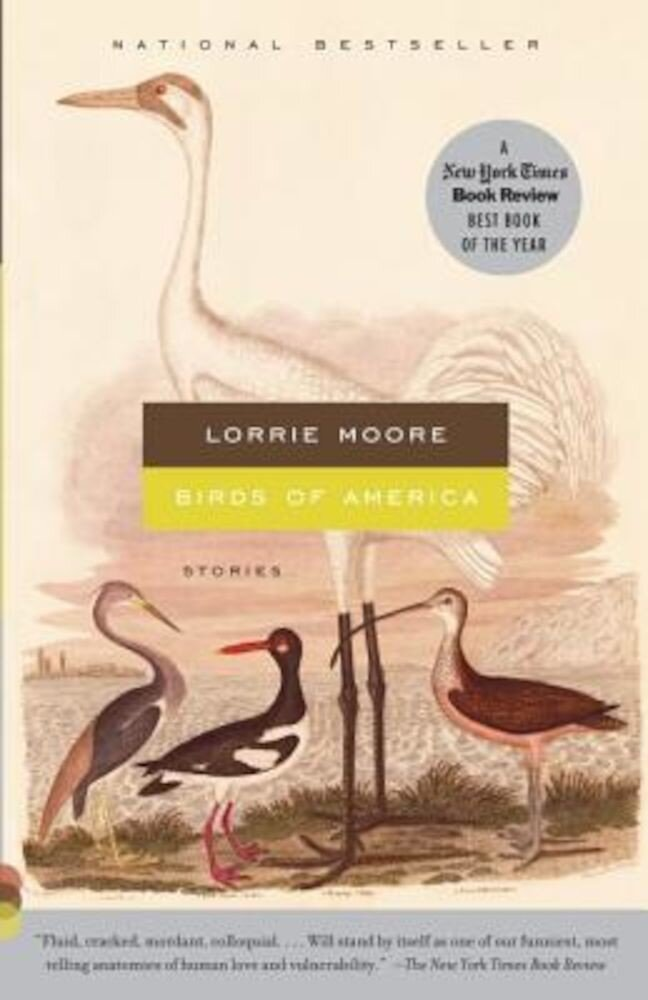 Birds of America: Stories, Paperback