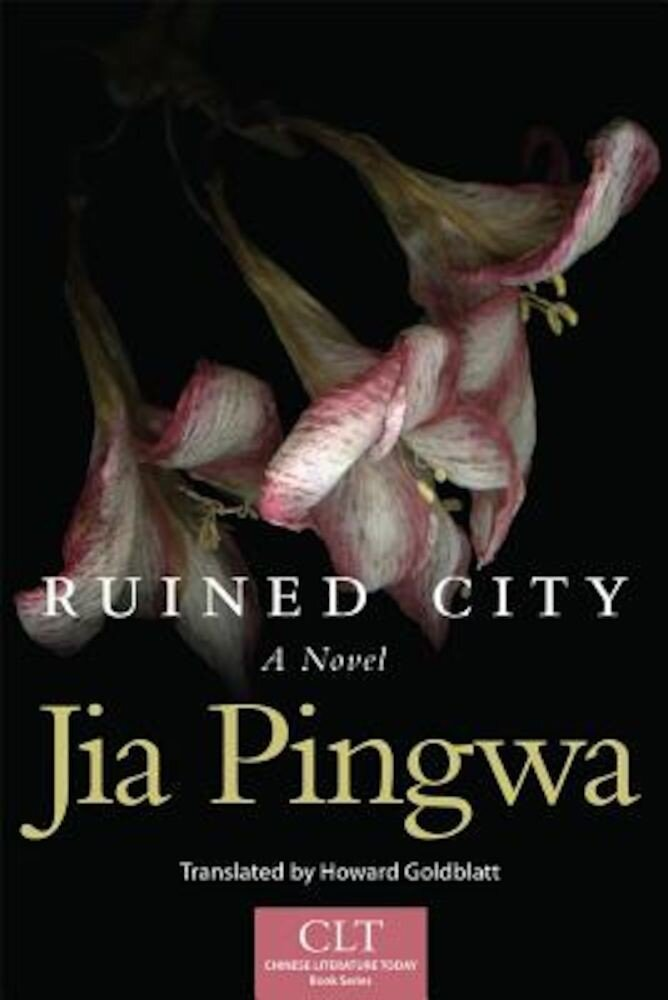 Ruined City, Paperback