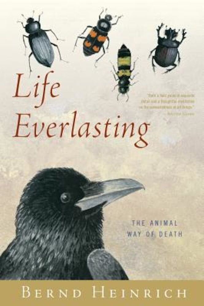 Life Everlasting: The Animal Way of Death, Paperback