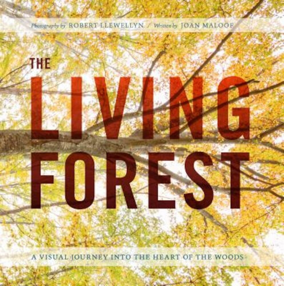 The Living Forest: A Visual Journey Into the Heart of the Woods, Hardcover