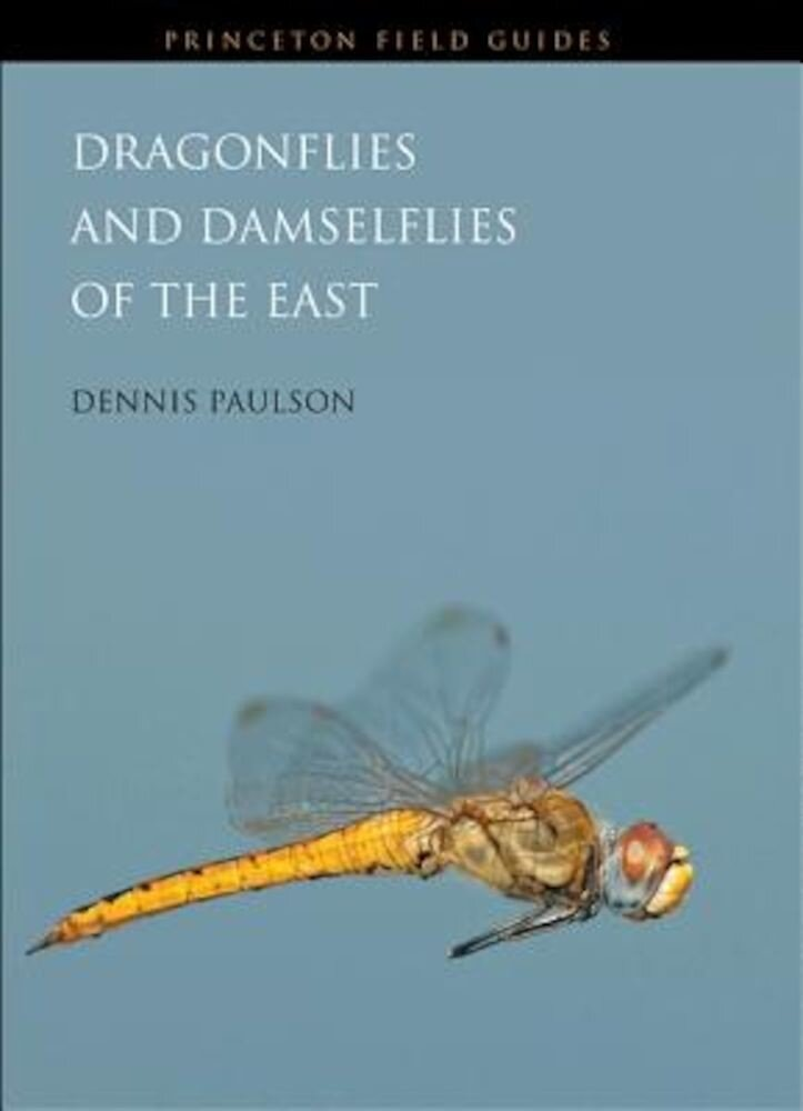 Dragonflies and Damselflies of the East, Paperback
