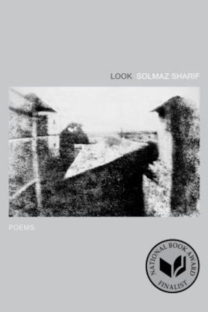 Look: Poems, Paperback