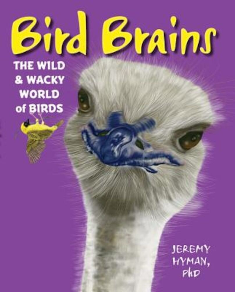 Bird Brains: The Wild & Wacky World of Birds, Hardcover
