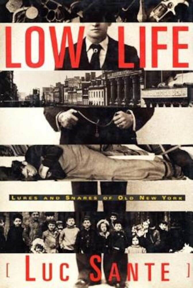 Low Life: Lures and Snares of Old New York, Paperback