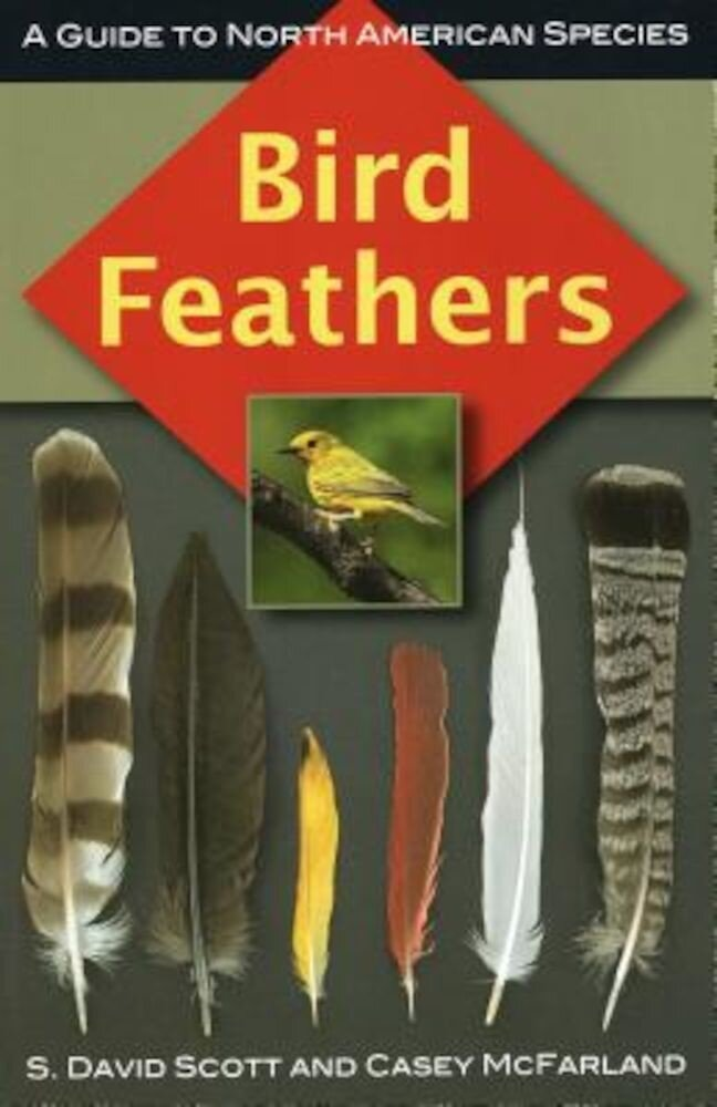 Bird Feathers: A Guide to North American Species, Paperback