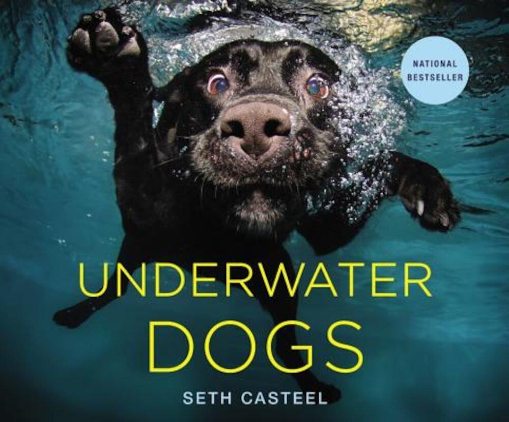 Underwater Dogs, Hardcover