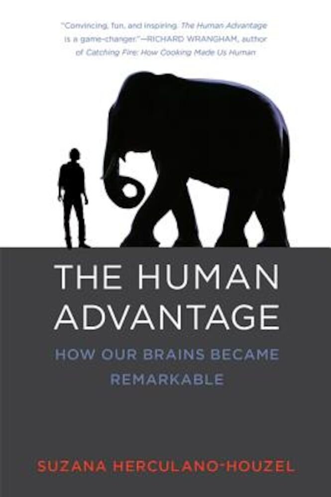 The Human Advantage: How Our Brains Became Remarkable, Paperback