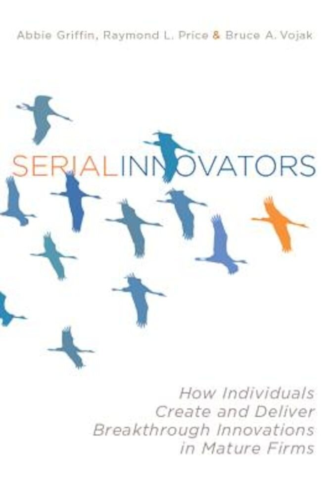 Serial Innovators: How Individuals Create and Deliver Breakthrough Innovations in Mature Firms, Hardcover