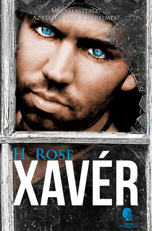 Xaver (eBook)