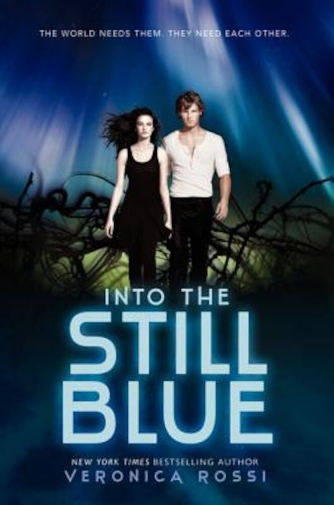 Into the Still Blue, Paperback