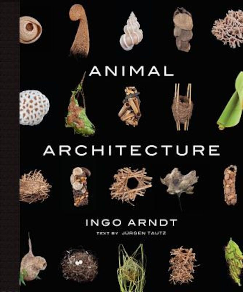Animal Architecture, Hardcover