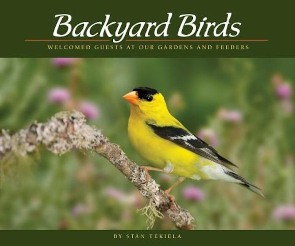 Backyard Birds: Welcomed Guests at Our Gardens and Feeders, Paperback