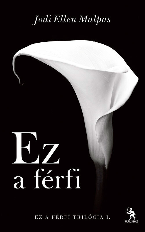 Ez a ferfi (eBook)