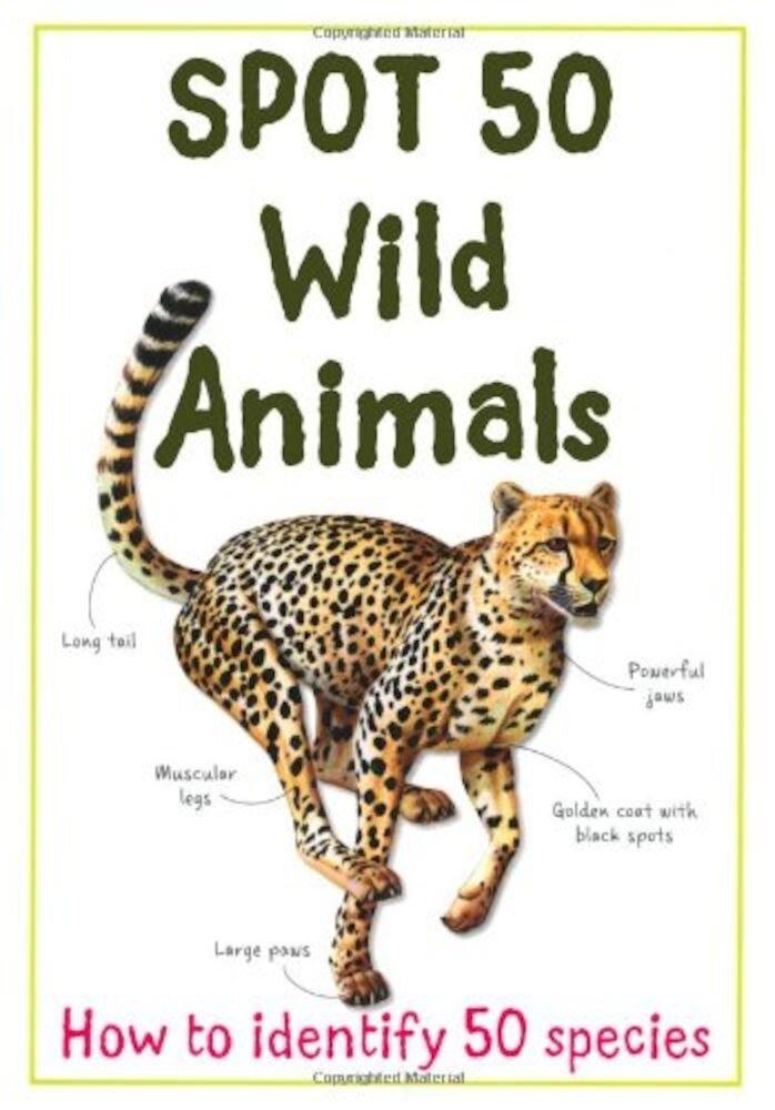 Spot 50 Wild Animals - Large Format