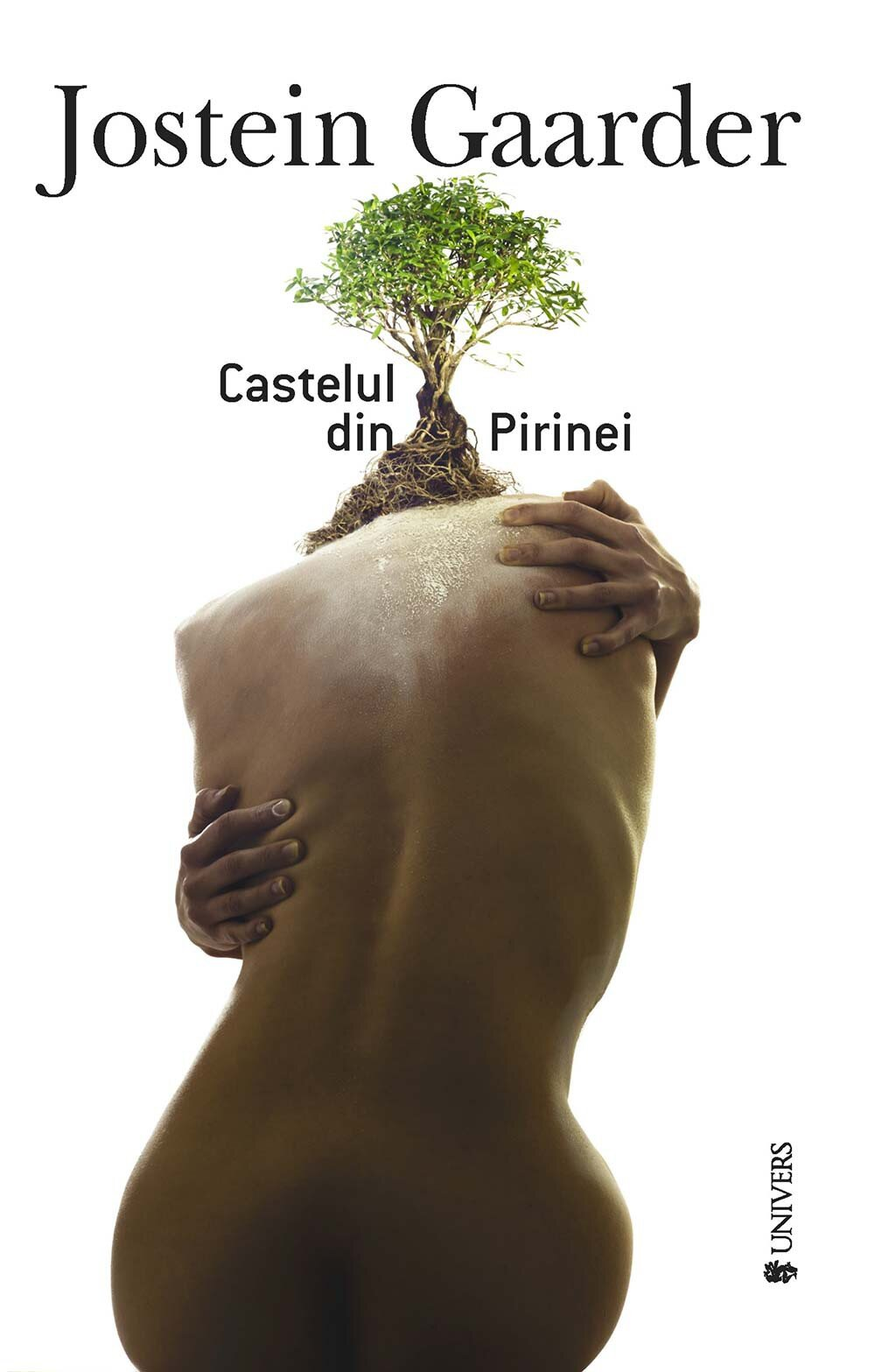 Castelul din Pirinei (eBook)