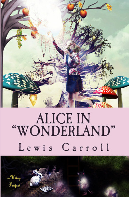 Alice in wonderland (eBook)