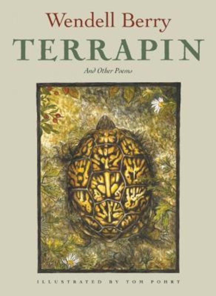 Terrapin: Poems, Paperback