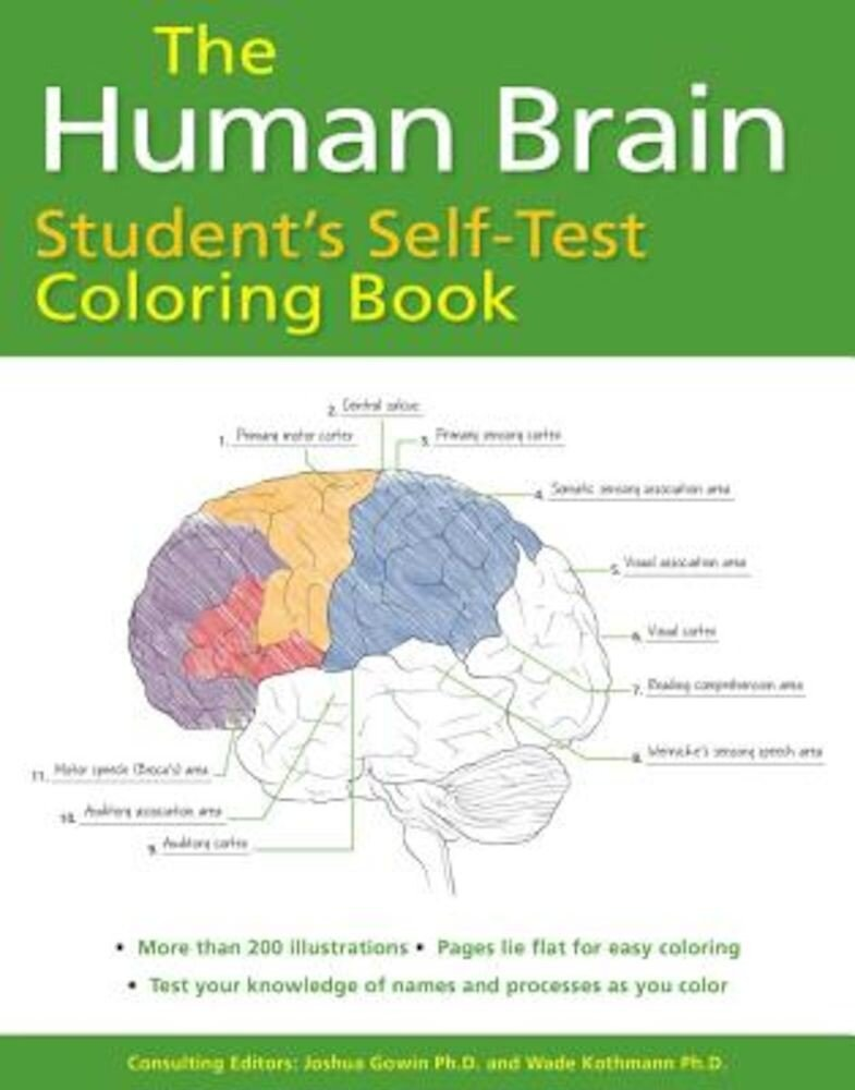 The Human Brain Student's Self-Test Coloring Book, Paperback