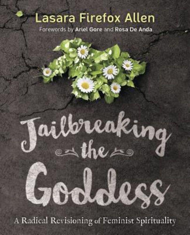 Jailbreaking the Goddess: A Radical Revisioning of Feminist Spirituality, Paperback