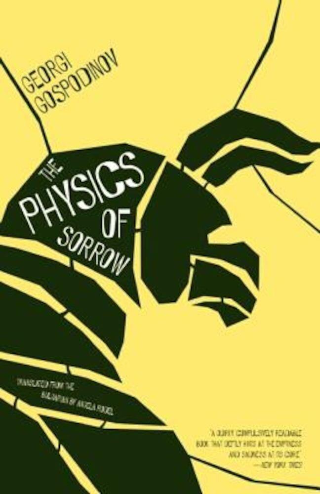 The Physics of Sorrow, Paperback