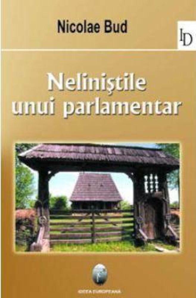 Nelinistile unui parlamentar