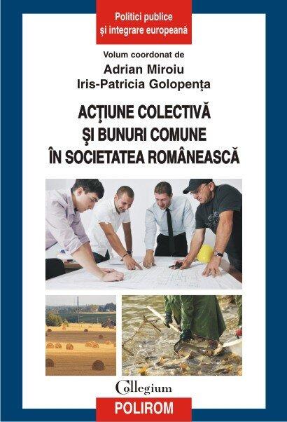 Coperta Carte Actiune colectiva si bunuri comune in societatea romaneasca