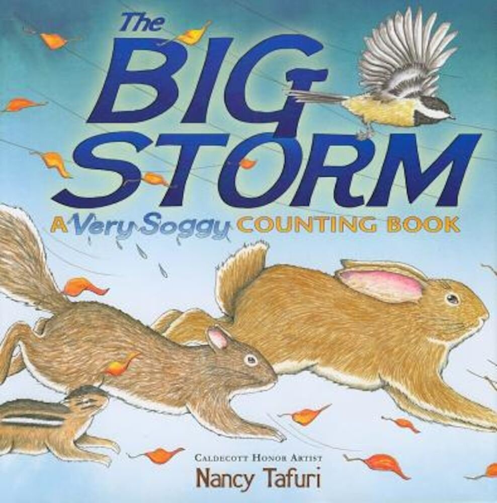 The Big Storm: A Very Soggy Counting Book, Hardcover