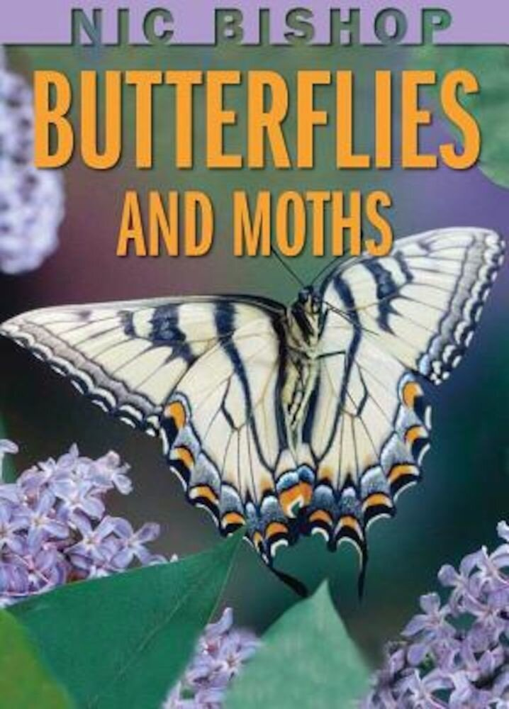 Nic Bishop Butterflies and Moths, Hardcover